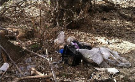 trash along rbc